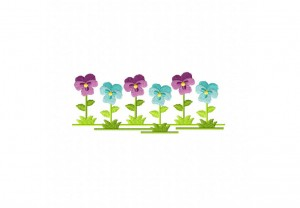 Country-Flowers-Pansy-5_5-Inch
