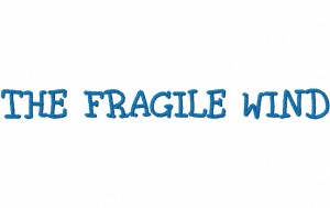 THEFRAGILEWINDEXAMPLE