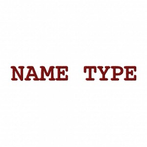 NAMETYPEEXAMPLE
