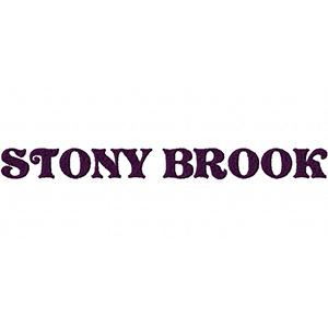 STONYBROOKEXAMPLE