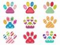 colorfulcatpaws-1024×768