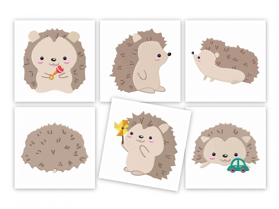 hedgehog-1024x768